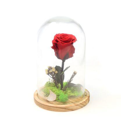 """Rosa """"La bella y la bestia"""""""